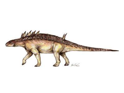 Hungarosaurus_tormai